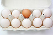Egg standing out