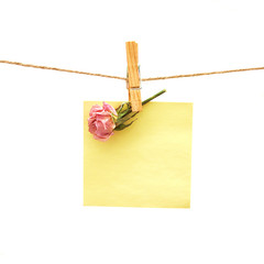 paper and rose with clothes peg over white. Series