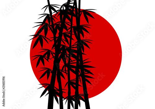 Fototapeten,bambu,foliage,asien,ost