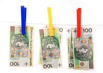 Washing Polish money