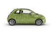 Natural Driving Car