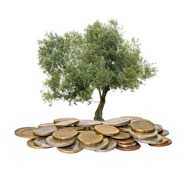 Olive tree growing from pile of coins