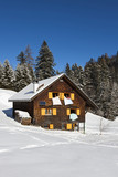 Rural sunny winter landscape with occupied chalet