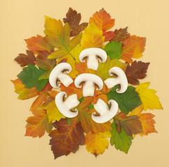 mushrooms on autumn leaf