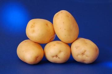 patate 4