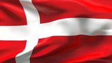 Creased Denmark satin flag in wind with seams and wrinkle poster