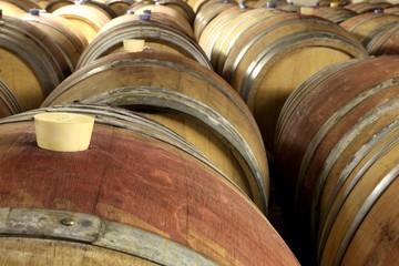 Weinkeller, kleine Barrique - Fässer