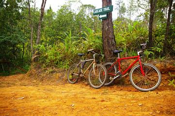 pair of mountain bikes on a trail