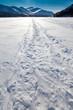 Windblown snowmobile tracks on frozen mountain lake
