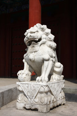 stone lion sculpture in china