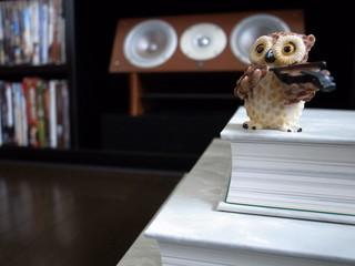 本の上のフクロウ