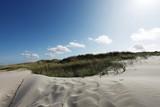 Düne im Sonnenschein - Dune in the sunshine