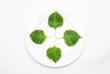 皿の上のシソの葉