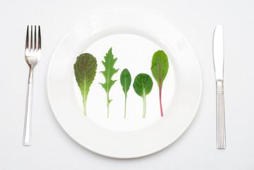 皿の上のサラダの葉