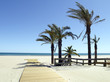 olaya tropical en canet