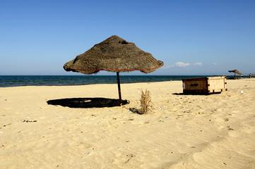 Sonne, Sand und Meer  Treibgut
