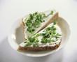 Soft cheese and parsley on wholemeal bread