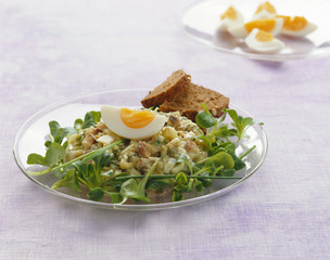 Matjes herring tartare with egg and corn salad