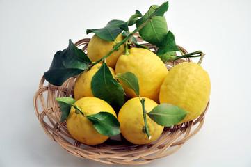 Cestino di limoni