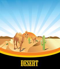 desierto en vector