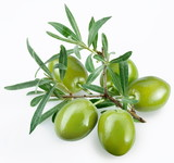 green olives with a branch on a white background - Fine Art prints