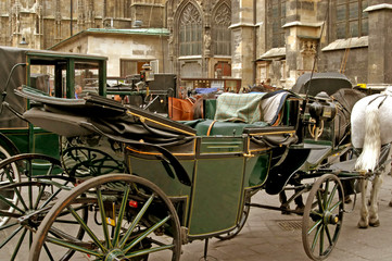 Carrozze in Piazza Santo Stefano - Vienna - Austria