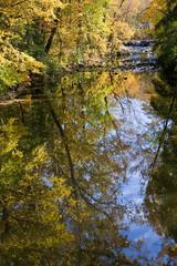 Sharon Woods Creek REflections
