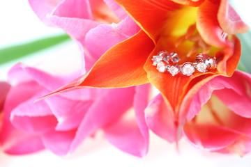 プレゼント ダイヤモンド
