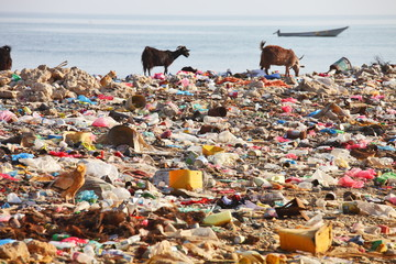 Dump on the beach - man-made environmental disaster