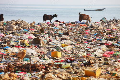 Dump on the beach - man-made environmental disaster - 21859721