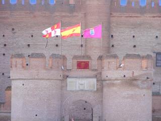 Castillo de la Mota (Detalles entrada)