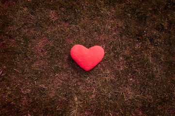 lost heart on grass