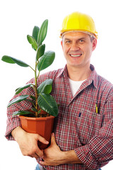 builder with ficus
