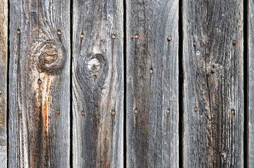 Black painted weathered wooden fence with rusty nail heads