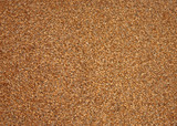 A Background Image of Wheat Grain Granules. poster