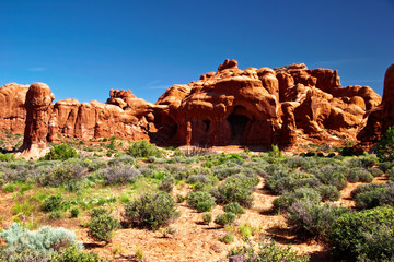 Sunny day in Arches Canyon. Utah. USA