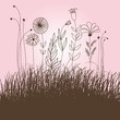 roleta: floral illustration
