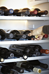 Wine refrigerator or a wine rack at home