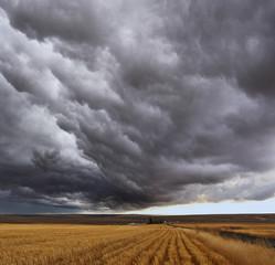 Thunderstorm above fields