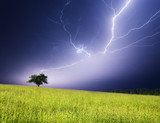 Fototapety lightning