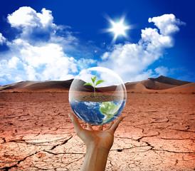 earth life