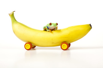 Fruit car