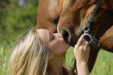Fototapety baiser équin