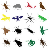 sixteen insects and rodents poster