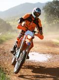 Fototapety Motociclista