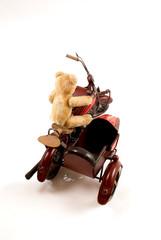 Teddy rider