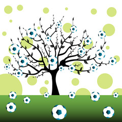 The football tree