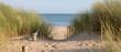 Fototapeten,düne,pfad,strand,küstenlinie
