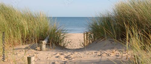 Fototapeten,sanddünen,pewter,strand,coastline