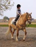 Fototapety Bambina di tre anni cavalca con la lingua fuori un pony